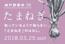 神戸野菜学vol.6 たまねぎ