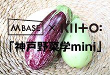 M BASE×KIITO「神戸野菜学mini」