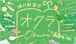 神戸野菜学 オクラ