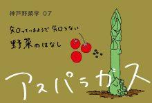 神戸野菜学vol.7 アスパラガス