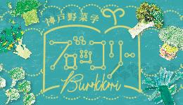 神戸野菜学 ブロッコリー