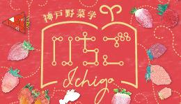 【開催中止】神戸野菜学 いちご